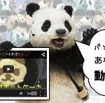 YouTuberと企業のコラボ企画動画【まとめ】